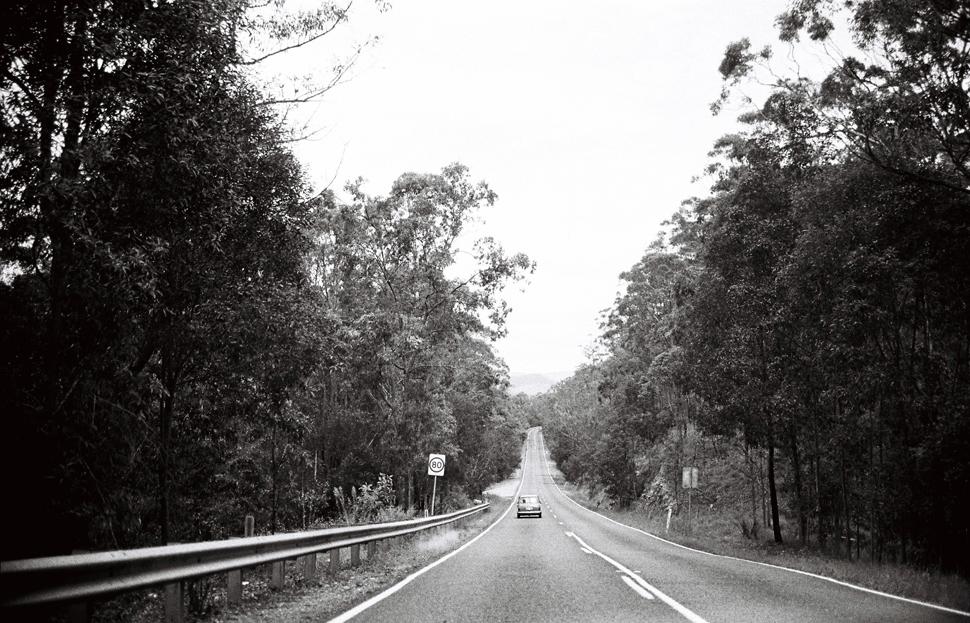springbrook-film-mini-tamborine-gold-coast-tweed-photographer010