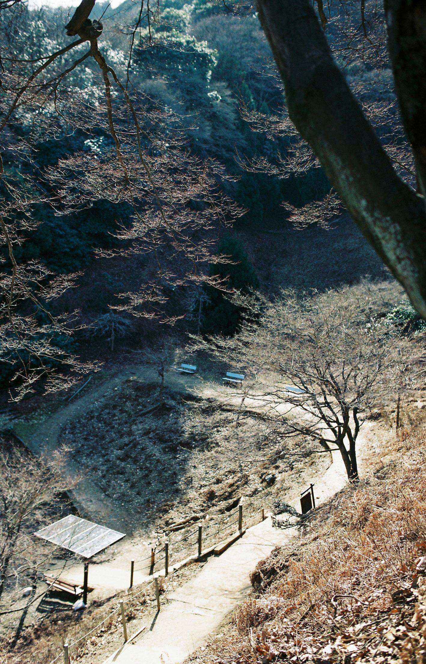 001-kyoto-arashiyama-sophie-baker-photography