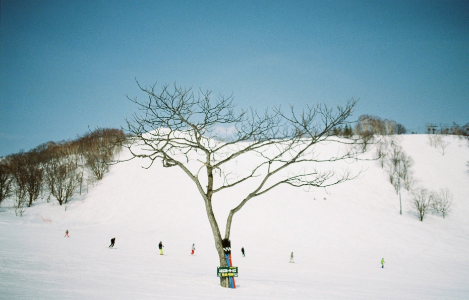 003-niseko-japan-sophie-baker-photography