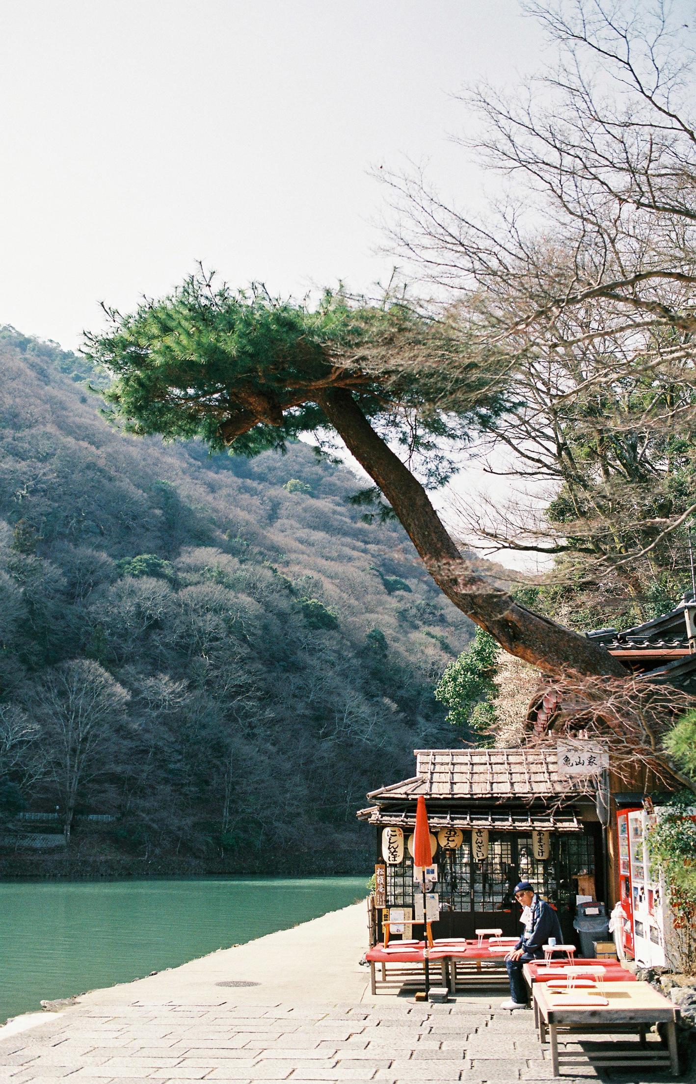 016-kyoto-arashiyama-sophie-baker-photography
