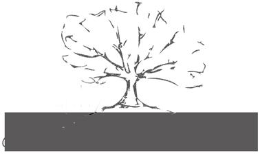 Sophie Baker Photography | Queensland & Interstate Wedding Photographer logo